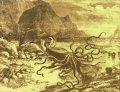 giant_squid_catalina.jpg