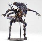 revoltech-alien-queen-1_1285936966.jpg