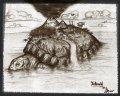turtleworldhanddraw.jpg
