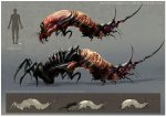 spidermite_web.jpg