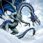 dragon-6708.jpg